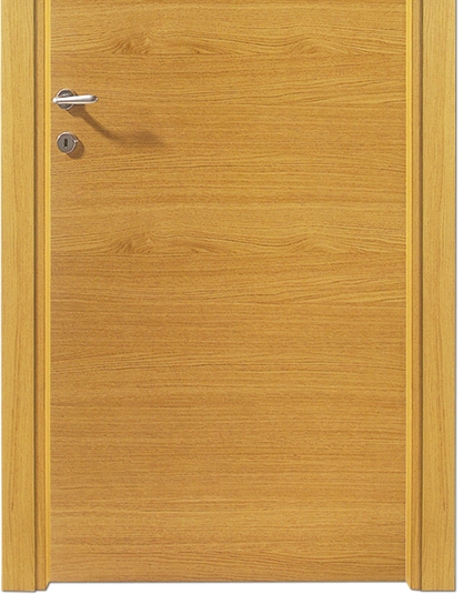 Minimalist wooden flush door