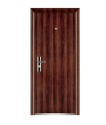 Minimalist series steel front door